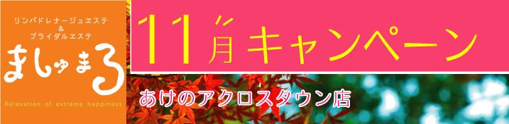 11月キャンペーン情報(あけのアクロスタウン店)