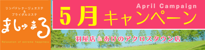 【ましゅまろ】5月キャンペーン情報!(羽屋店・あけのアクロスタウン店)