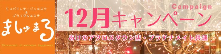 【ましゅまろ】12月キャンペーン情報!(あけのアクロスタウン店・プラチナメイト)