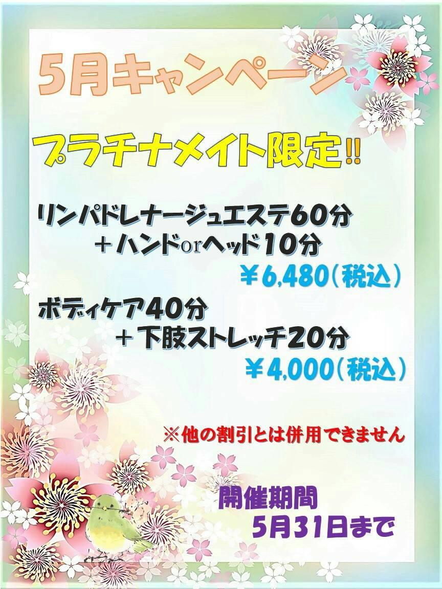 【ましゅまろ】5月キャンペーン情報2