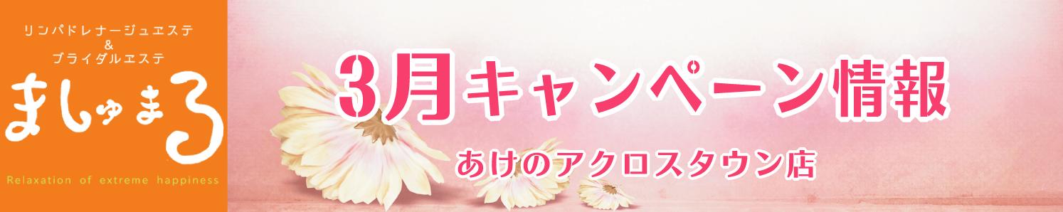 【ましゅまろ】3月キャンペーン『朝割(あさわり)』(ましゅまろ)