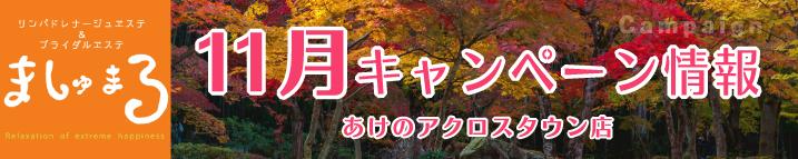 【ましゅまろ】11月限定キャンペーン朝割(ましゅまろ)
