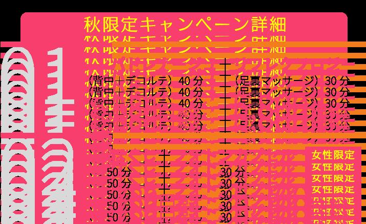 秋限定キャンペーン価格
