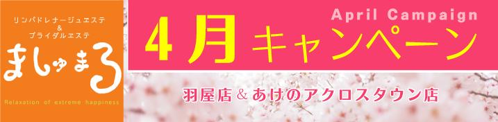 【ましゅまろ】4月キャンペーン情報!(羽屋店・あけのアクロスタウン店)