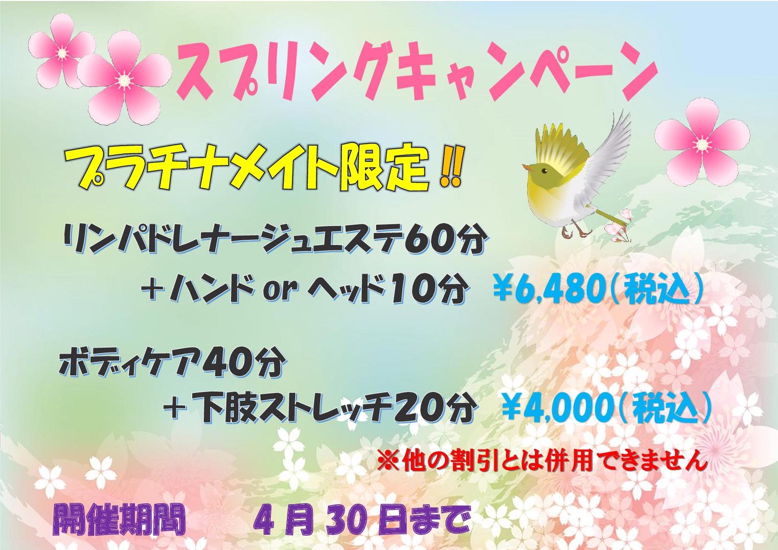 【ましゅまろ】4月キャンペーン情報2