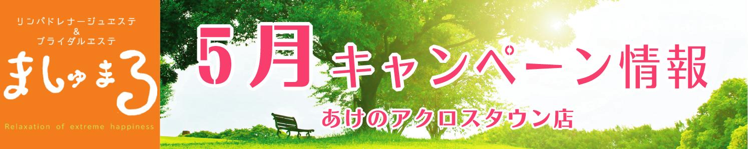 【ましゅまろ】5月キャンペーン情報(ましゅまろ)
